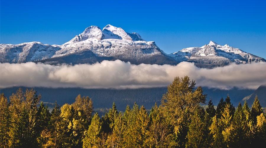 Mt. Begbie View